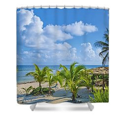 Island Beauty Shower Curtain by Stephen Anderson
