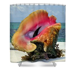 Jewel Of The Deep Shower Curtain by Karen Wiles