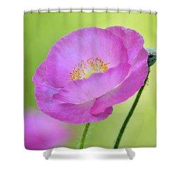 Just Call Me Pink Shower Curtain by Saija  Lehtonen