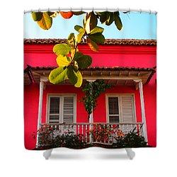 La Casa De Los Duendes Shower Curtain by Skip Hunt