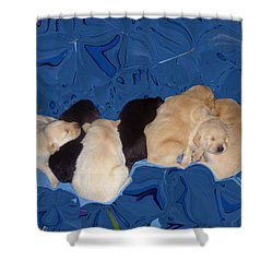 Lab Pups 1 Shower Curtain by Aimee L Maher Photography and Art Visit ALMGallerydotcom