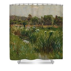 Landscape With Wild Irises Shower Curtain by Bruce Crane