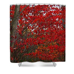 Last Gasp Shower Curtain by Ed Smith