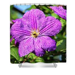 Last Summer Bloom Shower Curtain by Mariola Bitner