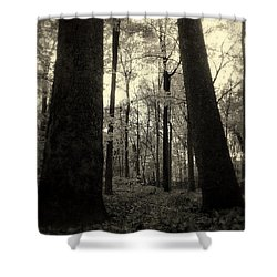 Lean Two Shower Curtain by Ed Smith