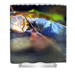 Leaves On Rock In Stream Shower Curtain by Sharon Talson