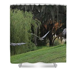Lesson A Success Shower Curtain by Carol Groenen