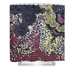 Lichen Pattern Series - 25 Shower Curtain by Heiko Koehrer-Wagner