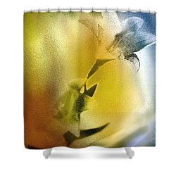 Lilly Shower Curtain by Mauro Celotti