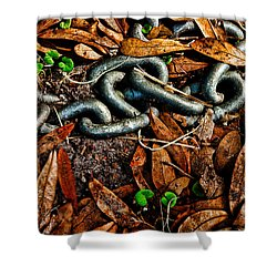 Links And Leaves Shower Curtain by Christopher Holmes