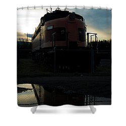 Littel Joe Reflections Shower Curtain by Tim Mulina
