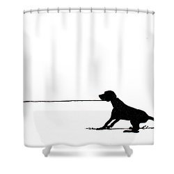 Little Dogs Doing Tricks On Little Canvas Shower Curtain by Cindy D Chinn