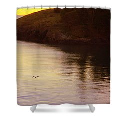 Lone Bird At Rosario Beach Point Shower Curtain by Randall Thomas Stone