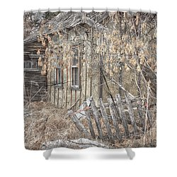 Lost Dog Shower Curtain by Jerry Cordeiro