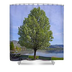 Lots Of Room To Sit Shower Curtain by John  Greaves