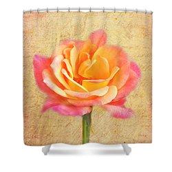 Love Letter Shower Curtain by Jai Johnson