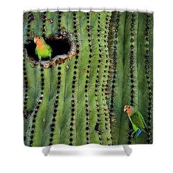 Lovebirds And The Saguaro  Shower Curtain by Saija  Lehtonen