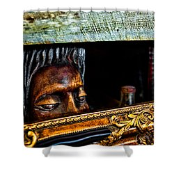 Lurking Shower Curtain by Christopher Holmes