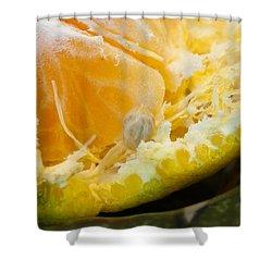 Macro Photo Of Orange Peel And Pips And Main Fleshy Part Shower Curtain by Ashish Agarwal