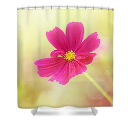 Mademoiselle Shower Curtain by Amy Tyler