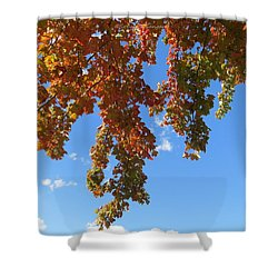 Magical Mother Nature Shower Curtain by Sonali Gangane