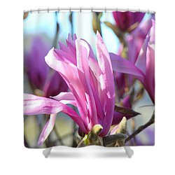 Magnolia Flowers Art Prints Pink Magnolia Tree Blossoms Shower Curtain by Baslee Troutman