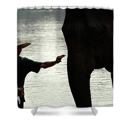 Mahut With Elephant Shower Curtain by Bob Christopher