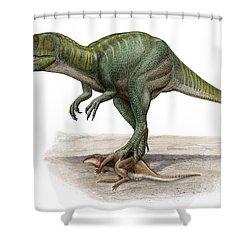 Marshosaurus Bicentesimus Shower Curtain by Sergey Krasovskiy