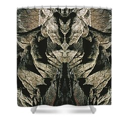 Masked Rock God Of Ogunquit  Shower Curtain by Nancy Griswold