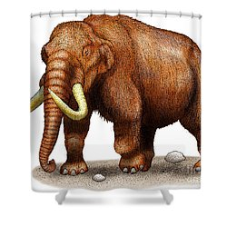 Mastodon Shower Curtain by Roger Hall and Photo Researchers