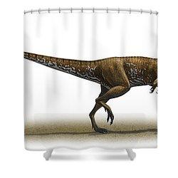 Megapnosaurus Kayentakatae Shower Curtain by Sergey Krasovskiy