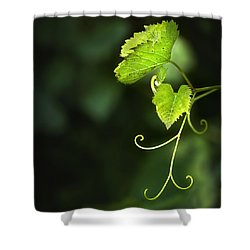 Memories Of Green Shower Curtain by Evelina Kremsdorf