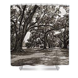 Memory Lane Monochrome Shower Curtain by Steve Harrington