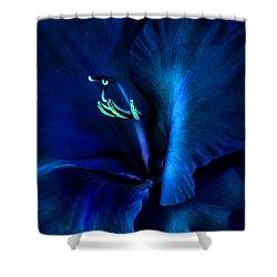 Midnight Blue Gladiola Flower Shower Curtain by Jennie Marie Schell