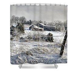 Midwestern Ice Storm - D004825 Shower Curtain by Daniel Dempster