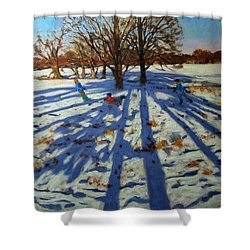 Midwinter Shower Curtain by Andrew Macara