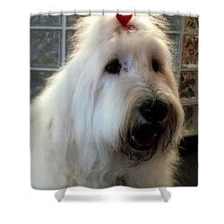 Miss Daisy May Shower Curtain by Karen Wiles