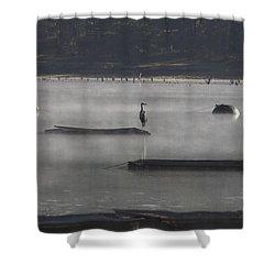 Misty Morning At Lake Wilhelmina Shower Curtain by Douglas Barnard