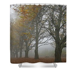 Misty November Shower Curtain by Georgia Fowler