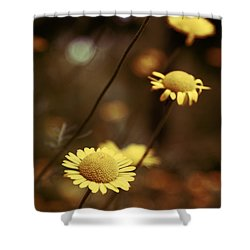 Momentum 03a Shower Curtain by Variance Collections