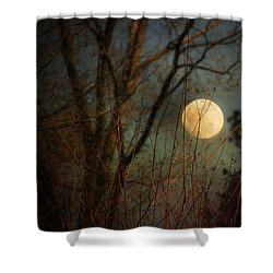 Moonrise Shower Curtain by Jai Johnson