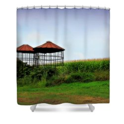Morning Corn Shower Curtain by Perry Webster