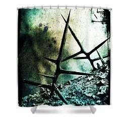 Mortal Combat Shower Curtain by Judi Bagwell