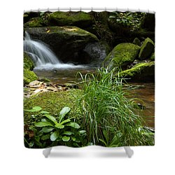 Moss And Water And Ambience Shower Curtain by Andrew McInnes