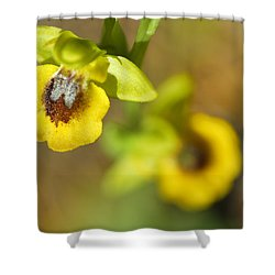 Mountain Orchids Shower Curtain by Guido Montanes Castillo