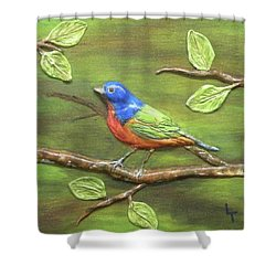 Mr. Bundting Shower Curtain by Lorrie T Dunks