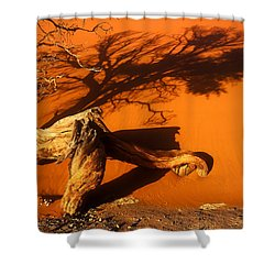 Namibia 2 Shower Curtain by Mauro Celotti