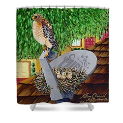 Nature Channel- Red Shouldered Hawk Shower Curtain by Katherine Young-Beck