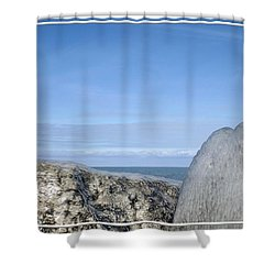 Natures Ice Sculptures 10 Shower Curtain by Rose Santuci-Sofranko