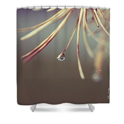 Neigerelle - 06a Shower Curtain by Variance Collections